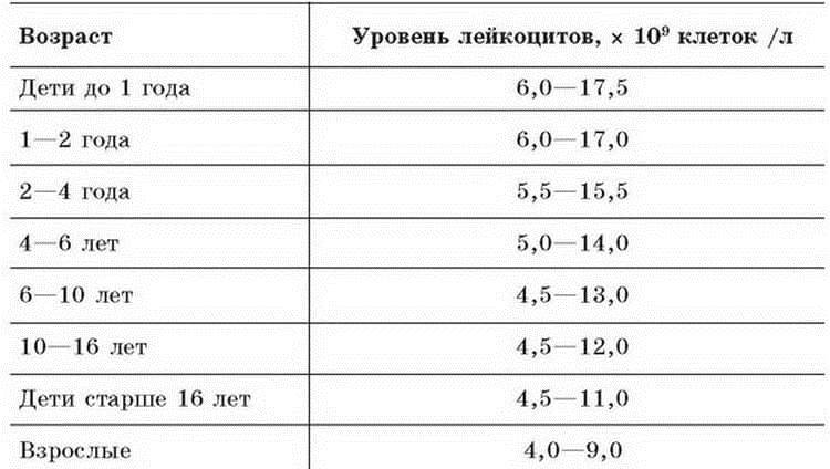 Повышенные лейкоциты в крови у ребенка - что это значит, нормы (в таблице), почему повышены