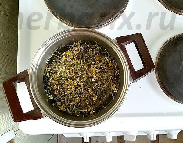 Можно ли давать грудничку слабенький чай? - когда можно давать ребенку чай - запись пользователя кристина (angel_fate) в сообществе питание новорожденного в категории всё о питье: соки, чаи, кефир, компотики, водичка - babyblog.ru