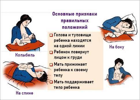 Как правильно прикладывать новорожденного ребенка для кормления грудью