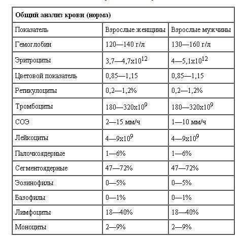 Расшифровка результатов клинического (общего) анализа крови у детей и взрослых — все нормы в таблица