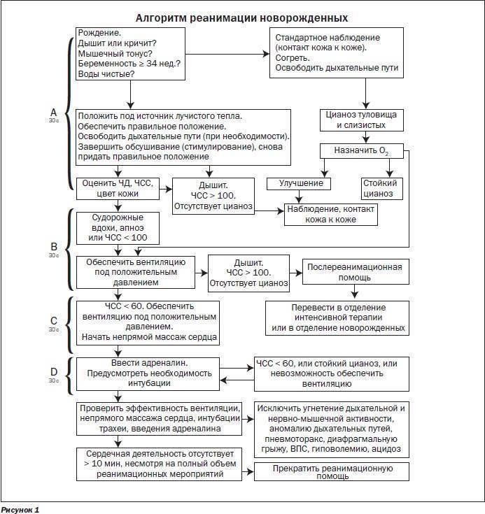 Особенности проведения сердечно-легочной реанимации у детей и алгоритм действий при реанимации