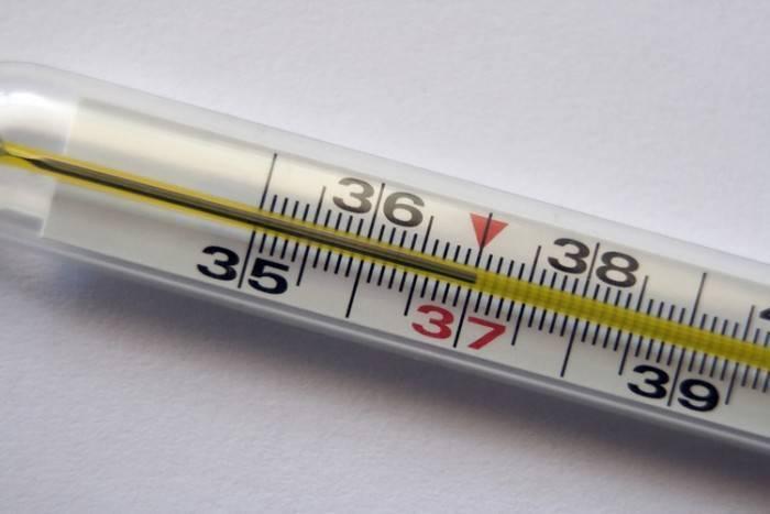 У малыша в возрасте 8 месяцев температура 38: что означает и что нужно делать