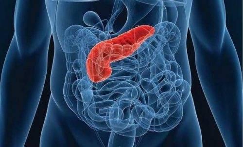 Острый и хронический панкреатит у детей: симптомы, лечение и профилактика
