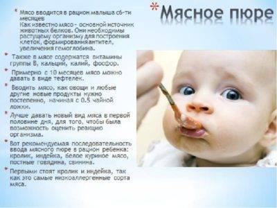 Как приготовить мясное пюре? - запись пользователя олюня (id1239851) в сообществе питание новорожденного в категории мяско, потрошка, рыбка - babyblog.ru