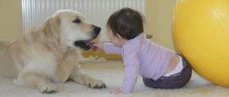 Перелом носа у ребенка (у маленьких детей)