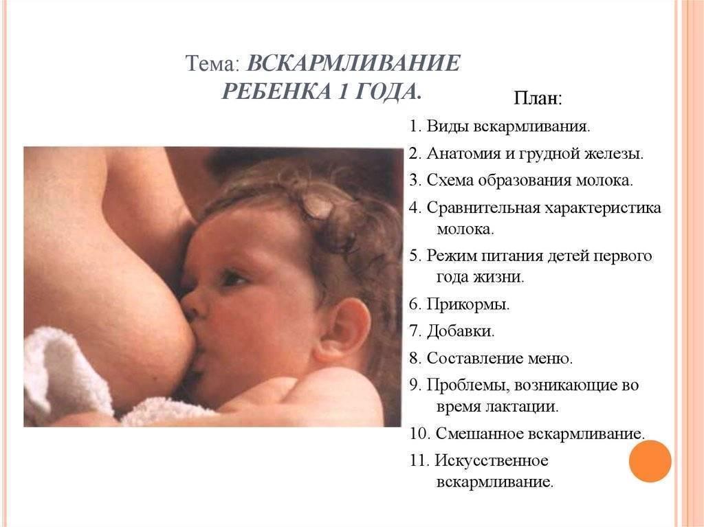 Особенности распорядка дня 4-месячного малыша