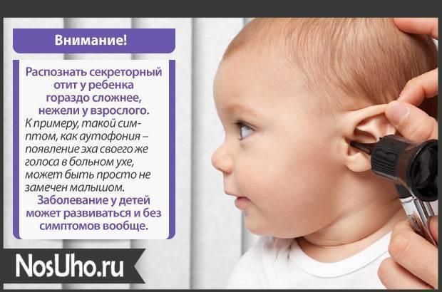Волосы у новорожденного на ушах – норма ли это и нужно ли от них избавляться?