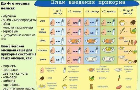 Прикорм в 4 месяца, прикорм 4 месячных   4 месяца ребенку развитие прикорм | метки: вводить, искусственный, вскармливание, первый, что