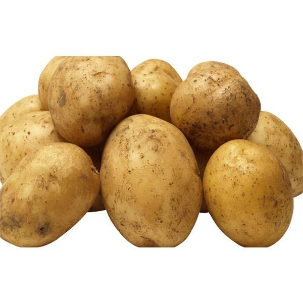 Готовим картофель для первого прикорма грудничка