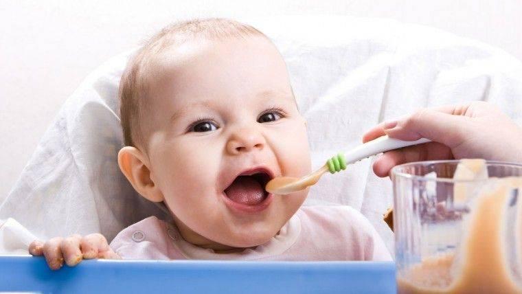 В каком возрасте можно начать давать грудничку пюре из различных продуктов?