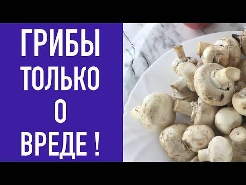 Можно ли давать шампиньоны и другие грибы маленьким детям?