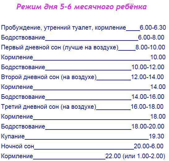 Распорядок дня для 6-ти месячных карапузов. - режим дня 6 месячного ребенка - запись пользователя ирина (sattarhik) в сообществе здоровье новорожденных - babyblog.ru