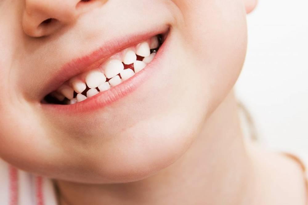 Молочные зубы: порядок роста, схема и последовательность