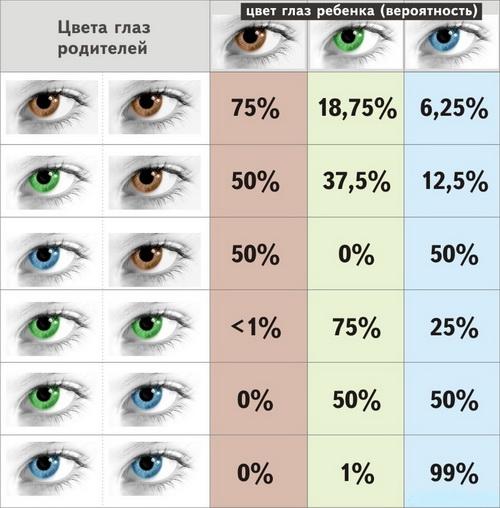 Цвет глаз у ребенка от родителей — таблица