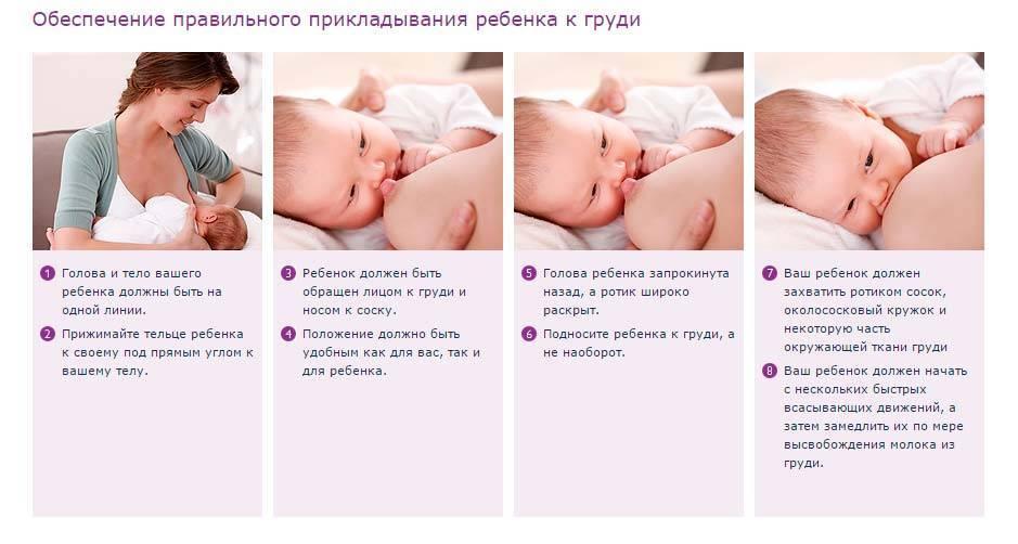Грудное вскармливание новорожденных: правила, проблемы, техника