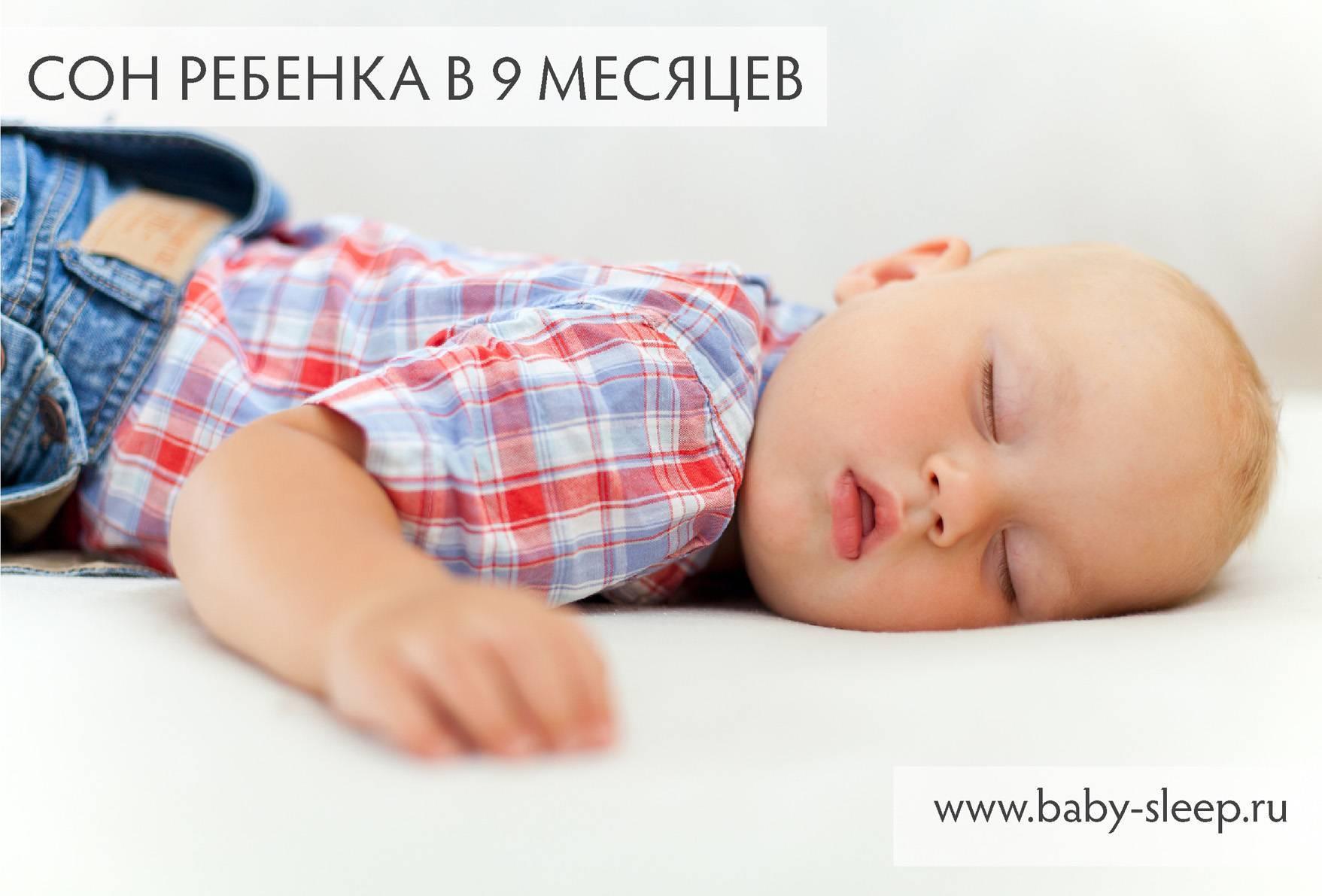 Характеристика структуры сна в грудном возрасте
