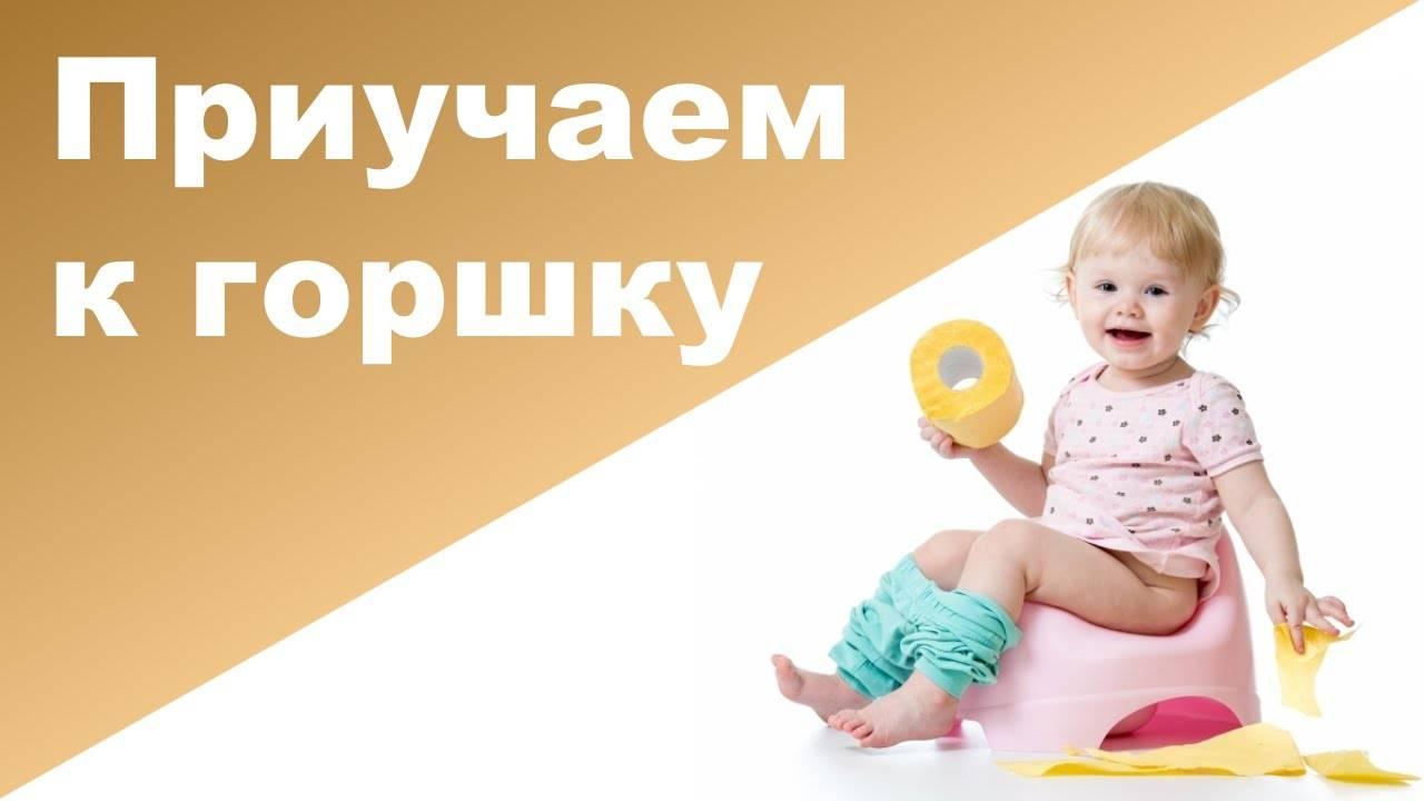 В каком возрасте приучать ребенка к горшку: когда нужно, со скольки лет