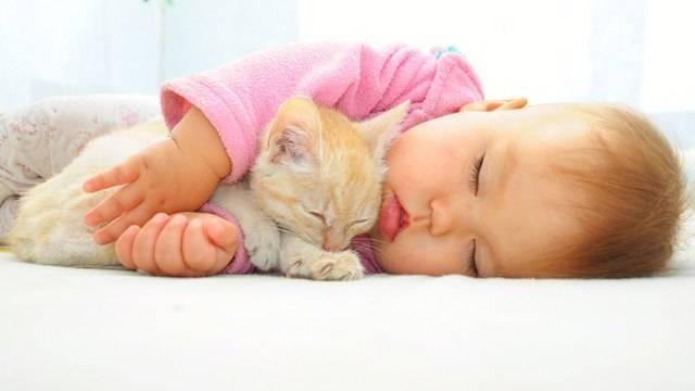 Как??? как ребенка уложить на дневной сон без груди и укачивания?!?! - сон без груди - запись пользователя галочка (galchena_1) в сообществе грудное вскармливание в категории раннее завершение гв (до полутора-двух) - babyblog.ru