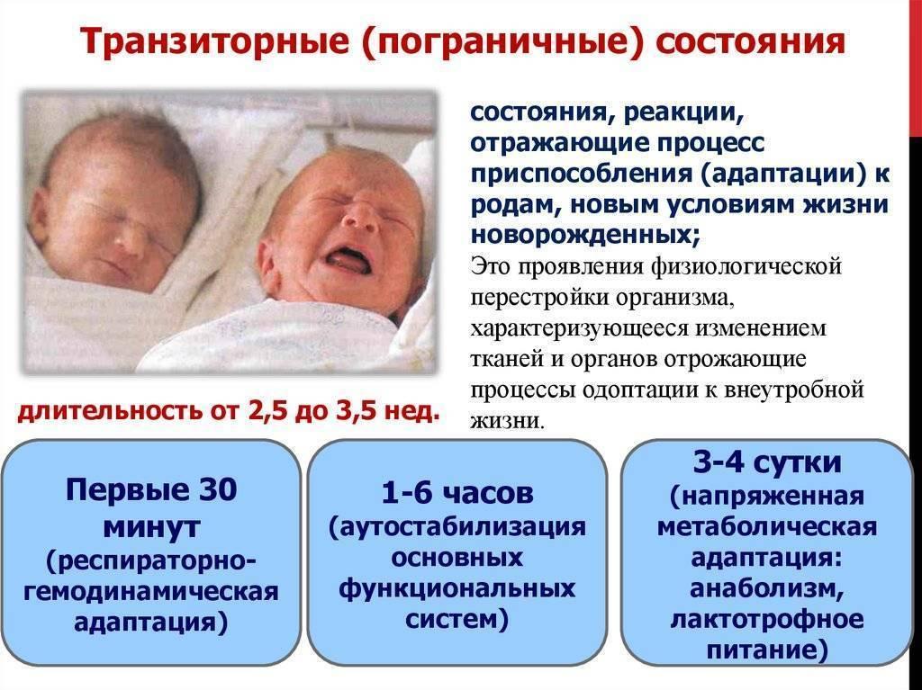 Транзиторные (переходные) состояния новорожденных в период адаптации (половой криз, физиологическая убыль массы тела, физиологический катар кожи, физиологическая желтуха). клиника. диагностика.