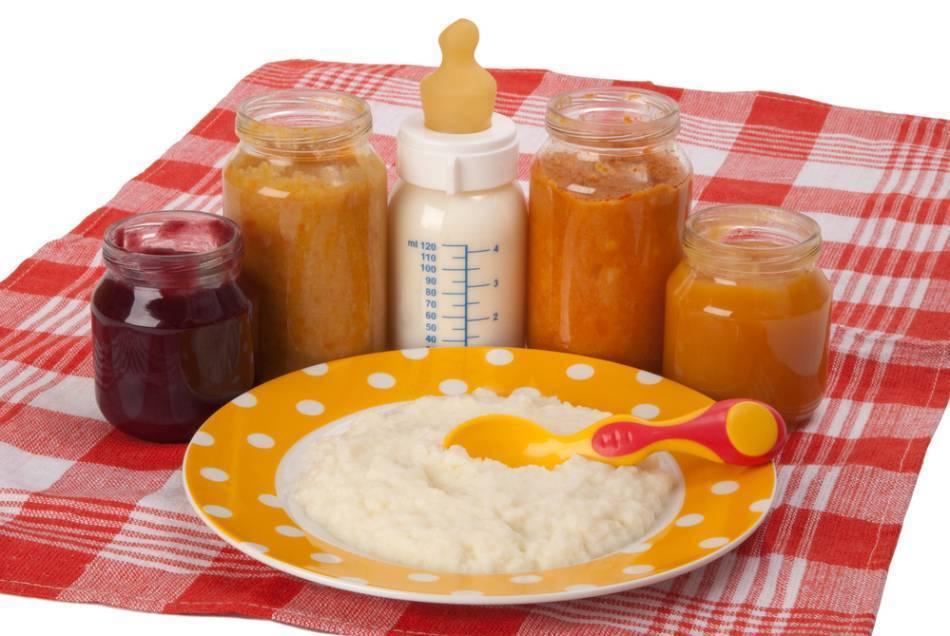 Когда вводить творог в прикорм грудничка: во сколько месяцев, как правильно ввести