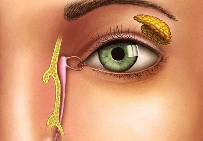 Непроходимость слезного канала (дакриоцистит) (памятка)