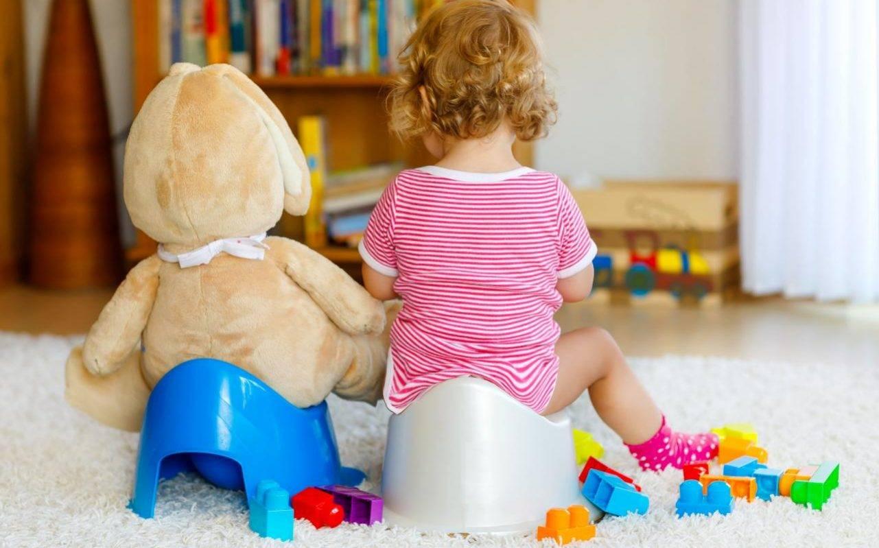 Как приучить ребенка какать в горшок?