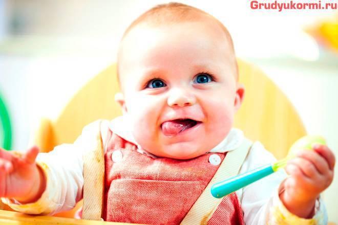 Вводим прикорм в рацион малыша: последовательность продуктов по месяцам