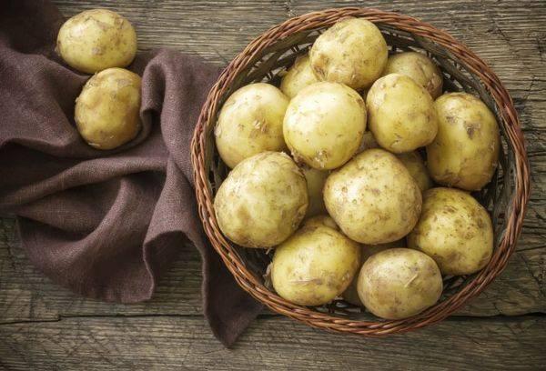 Картофельное пюре для грудничка: когда можно,как приготовить, секреты