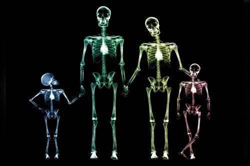 При рождении у младенца 170 костей. сколько костей у ребенка? отличия от скелета взрослого человека