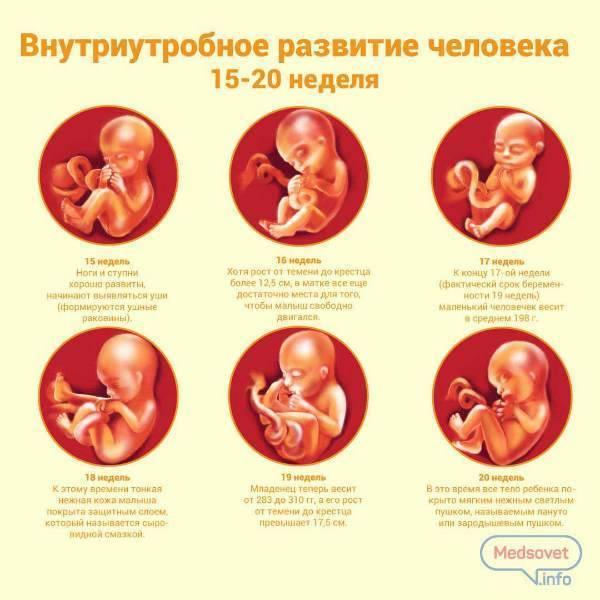 Развитие недоношенного ребенка по месяцам до года