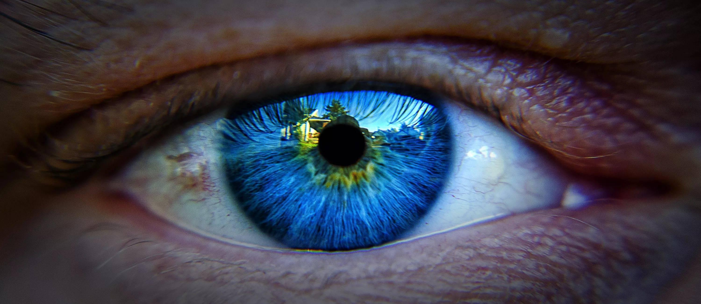 Причины желтых белков глаз у новорожденных