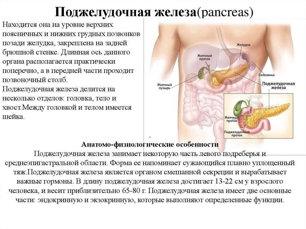 Панкреатит у детей (воспаление поджелудочной железы) – симптомы, первая помощь, лечение