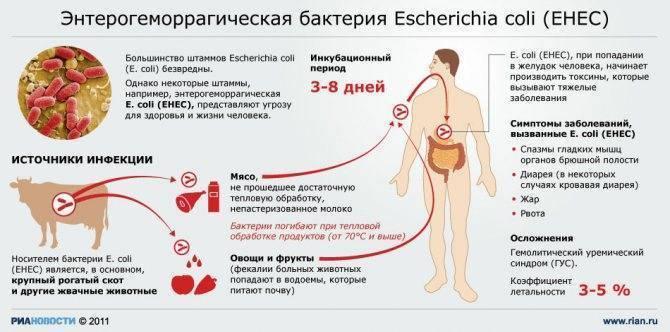 Дисбактериоз у грудничков   лактобактерии для грудничков