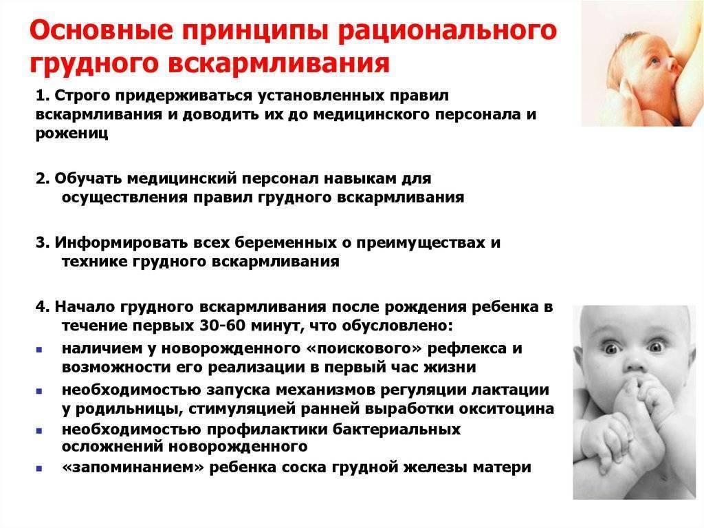 Новорожденный ребенок – правила ухода и кормления в первый месяц жизни малыша