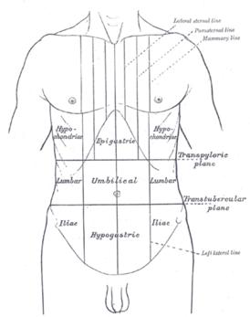 У ребенка поджелудочная железа болит симптомы лечение