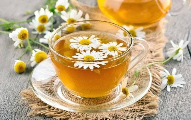 Полезные свойства чая, настоя и отвара ромашки для грудничков