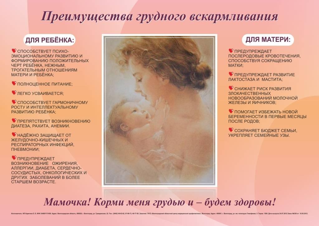 Техника и правила прикладывания ребенка к груди