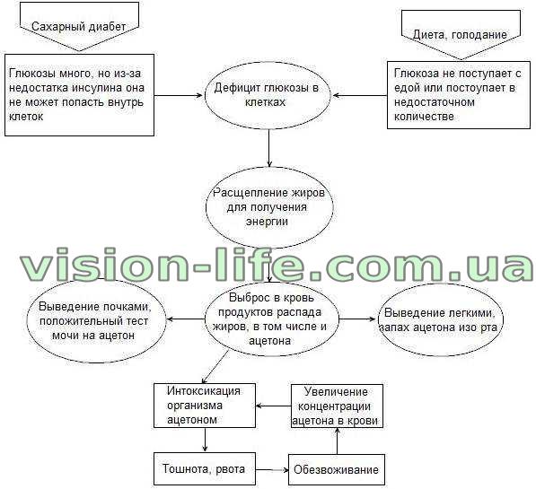 Ацетон у ребенка: причины, симптомы, лечение и диета