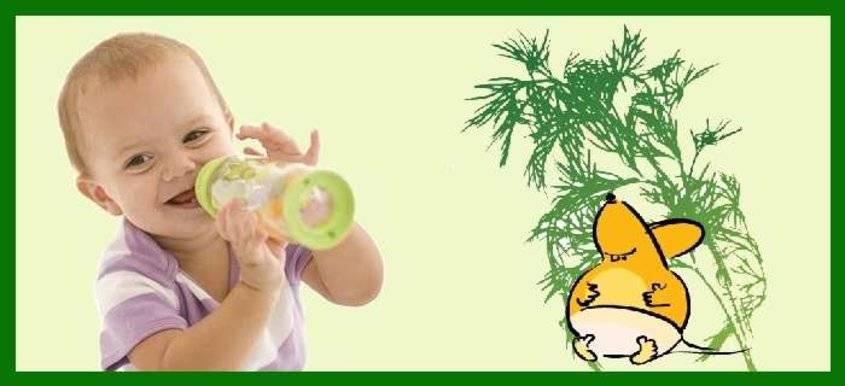Укропная вода для новорожденных от коликов в аптеке