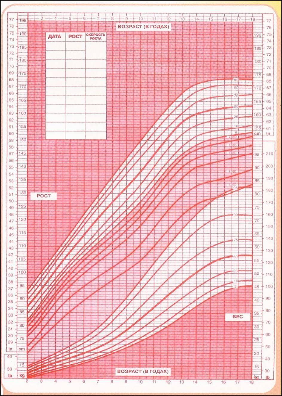Нормы окружности головы ребенка с 0 до 12 месяцев: таблица, виды отклонений