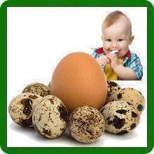 Яичный белок. - с какого возраста можно давать белок - запись пользователя юлия (150385) в сообществе питание от года до трех в категории  яйца и молочные продукты - babyblog.ru