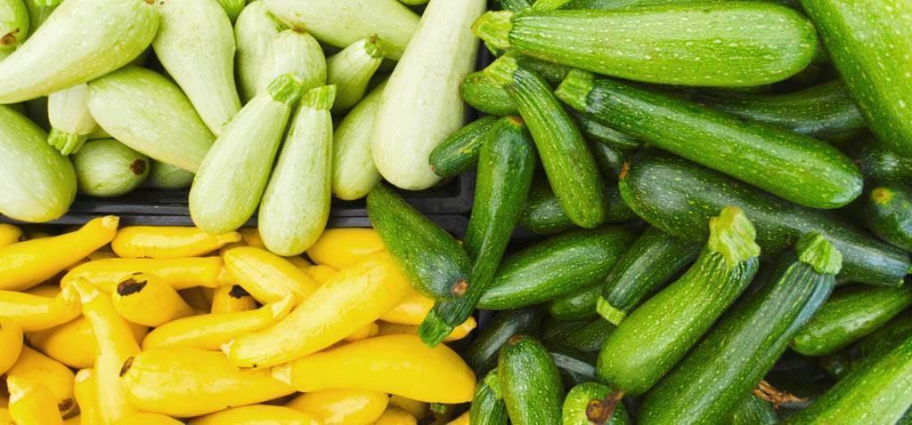 Пюре из кабачка для грудничка: как приготовить кабачок, рецепты