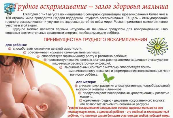 Как часто надо кормить новорождённого?