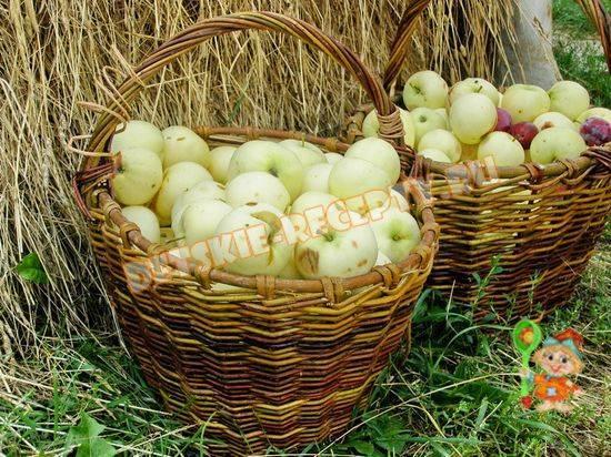 Пюре из яблок для грудничка: рецепты на любой вкус
