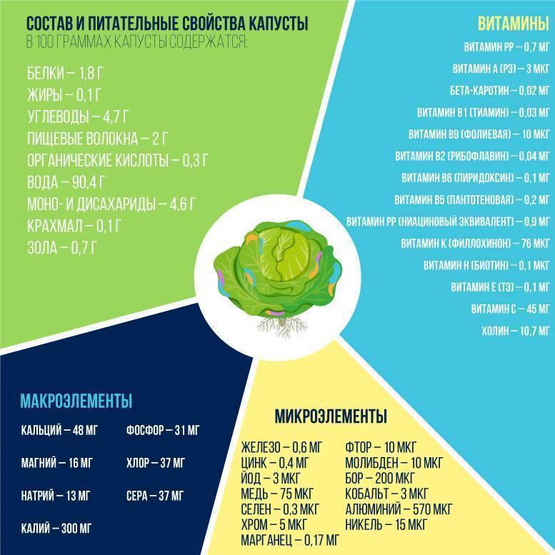 Нюансы введения капусты в рацион ребенка: с какого возраста можно давать и какие виды овоща?