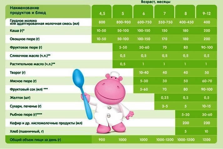 Прикорм детей при грудном вскармливании  — правила введения по месяцам до года
