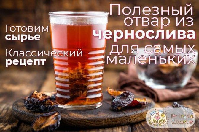 Otvar-chernosliva-dlya-grudnichka - запись пользователя елена (lena178) в сообществе здоровье новорожденных в категории стул новорожденного - babyblog.ru