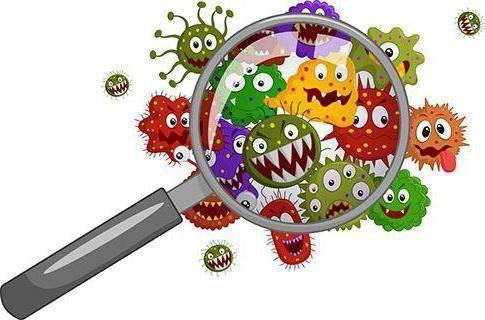 Энтерококки— симптомы, причины, виды и лечение энтерококковой инфекции