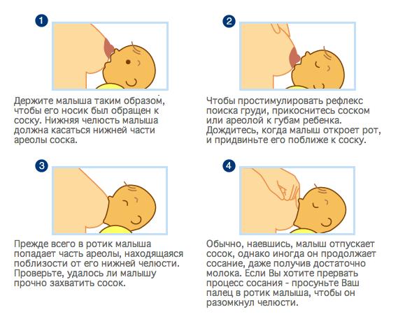 Правила прикладывания ребенка к груди для кормления