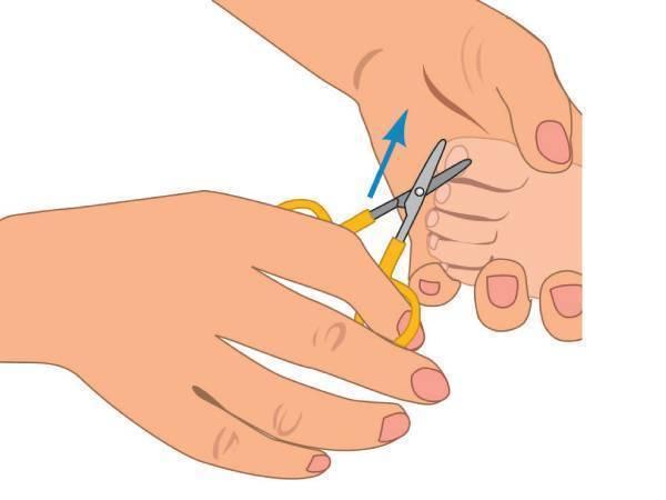 Как подстричь ногти новорожденному: советы для молодых мам